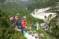 13-Alpgartensteig-erste-Leitern-P1130424-Mittel