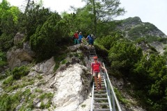 14-Alpgartensteig-weitere-Leitern-DSC00046-Mittel