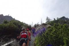 15-Alpgartensteig-weitere-Leitern-DSC00049-Mittel