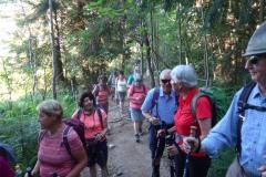 2-Aufstieg-im-Wald