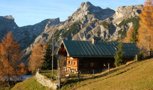 Artikelbild zu Artikel Freilassinger Hütte bekommt neues Dach