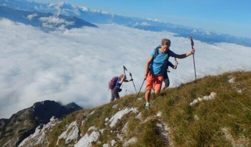 Artikelbild zu Artikel Bergtour Schönfeldspitze (2653m)